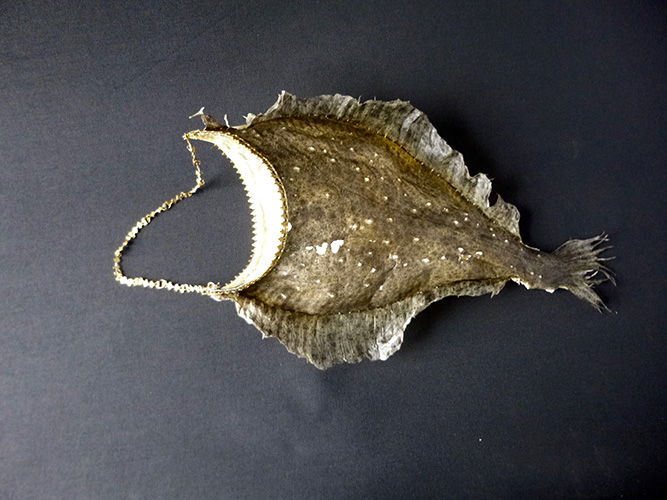 Handbag made from a Flounder, Brass trim and handle